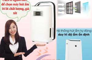 Cách ít người biết để chọn máy hút ẩm 16 lít chất lượng, giá tốt