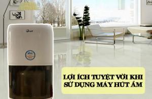 Lợi ích tuyệt vời khi sử dụng máy hút ẩm