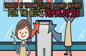 Cách chọn máy hút ẩm tốt nhất loại bỏ rắc rối quần áo ẩm ướt trong ngày mưa