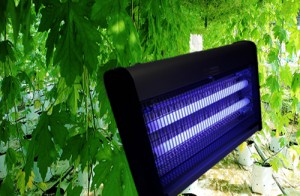 Giới thiệu đèn diệt côn trùng tốt nhất cho ngành trồng trọt
