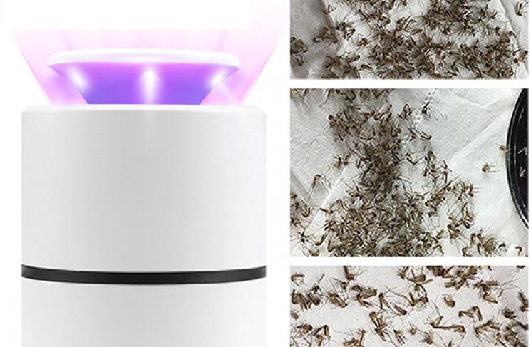 Làm thế nào đèn bắt muỗi sử dụng tia cực tím để diệt côn trùng