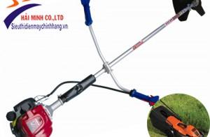 Sử dụng máy xạc cỏ DL 330 để làm sạch cỏ vườn
