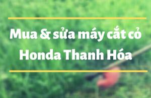 Nơi bán, sửa chữa máy cắt cỏ honda Thanh Hóa