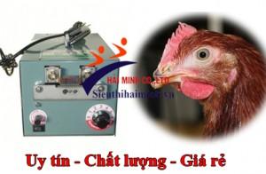 Cần quan tâm thông số kỹ thuật gì khi mua máy cắt mỏ gà