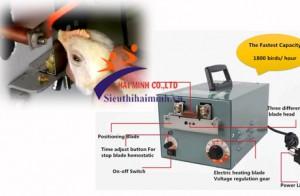 Máy cắt mỏ gà - giải pháp mới trong chăn nuôi hiện nay