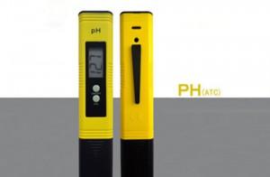 Bút Đo Ph/Nhiệt Độ P-2S1 Có Điểm Gì Nổi Bật?