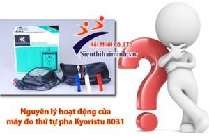 Nguyên lý hoạt động của đồng hồ đo thứ tự pha kyoritsu 8031 như thế nào?