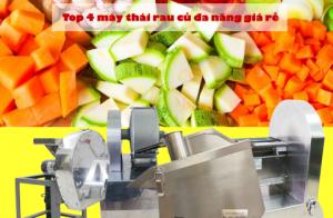 Top 4 máy thái rau củ đa năng giá rẻ